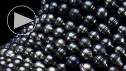 タヒチ産8~10mm南洋黒真珠ネックレス 山盛り1