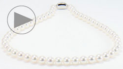 和珠8~8.5mm花珠本真珠ネックレス 全体