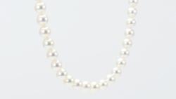 和珠8~8.5mm花珠本真珠ネックレス 吊って回転