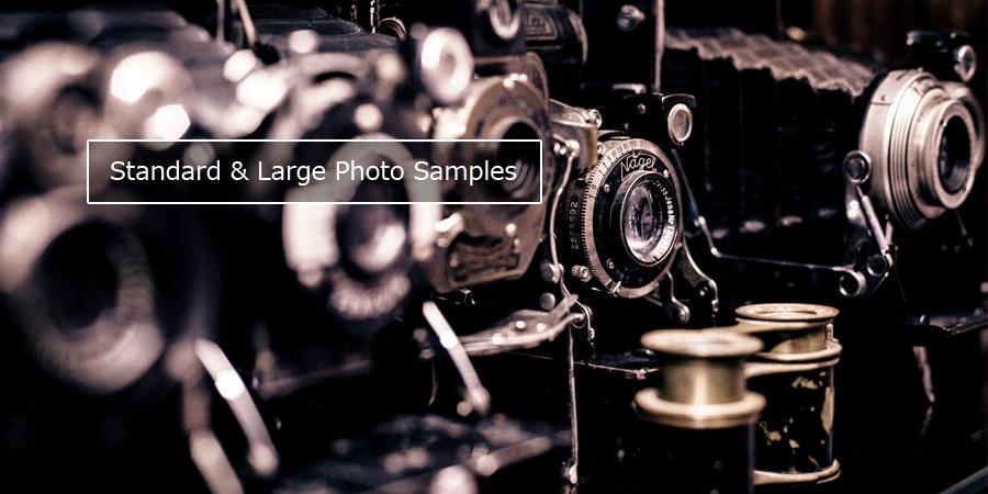 スタンダード&ラージコースの写真撮影サンプル画像