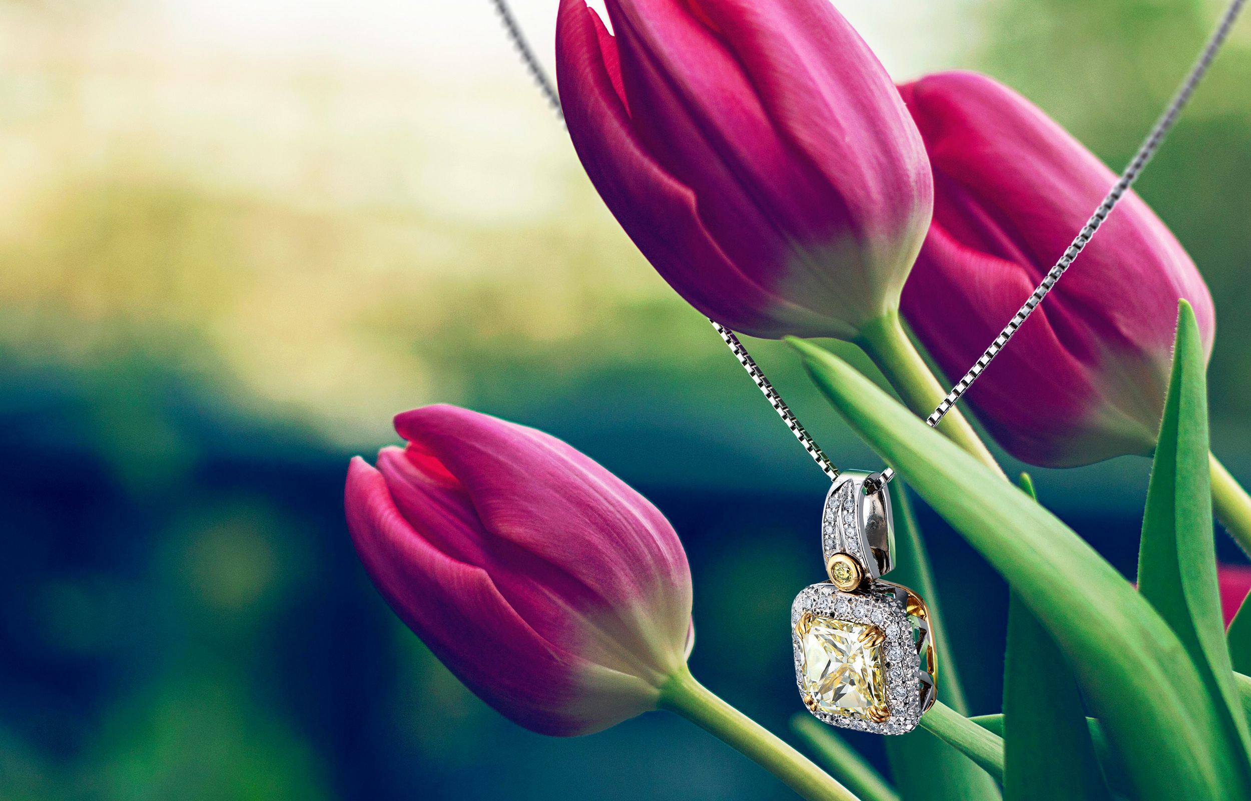 yellow_diamond_necklaces_with_tulips_photo_studio_is_image_20170224